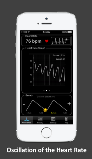 Heart Rate Plus: Coherence and Oscillation of the Heart Rate